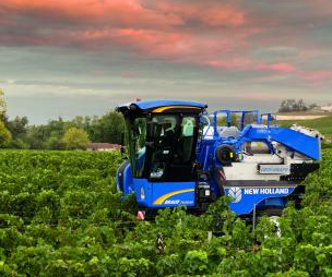 Harvester in vineyard